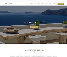 Andros WordPress Theme by cssigniter