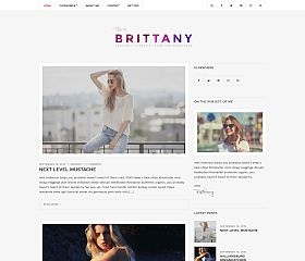 Brittany Light WordPress Theme by cssigniter