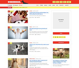 Doberman WordPress Theme by cssigniter