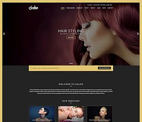 Salon WordPress Theme by cssigniter