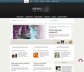 eNews WordPress Theme by Elegant Themes