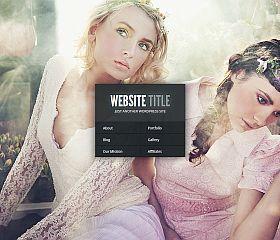 Gleam WordPress Theme by Elegant Themes