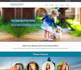 Business Grow WordPress Theme by InkThemes