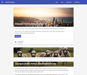 MDLWP WordPress Theme