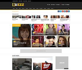 Buzzz WordPress Theme via MOJO Marketplace