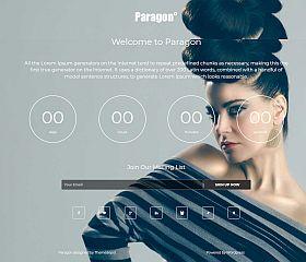 Paragon WordPress Theme via MOJO Marketplace