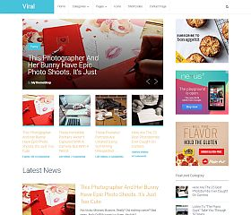 SocialNow WordPress Theme by MyThemeShop