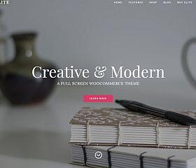 Elite WordPress Theme by Organized Themes