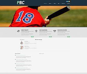 Professional Baseball Club WordPress Theme by TemplateMonster