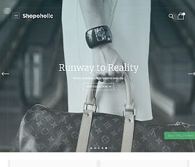Shopoholic WordPress Theme by Templatic
