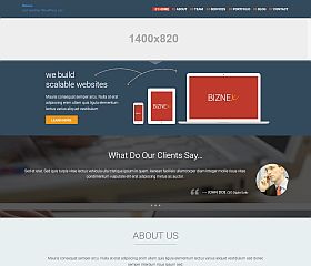 BizNex WordPress Theme by TeslaThemes