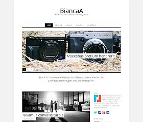BiancaA WordPress Theme by Theme Junkie
