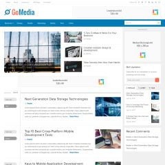 GoMedia WordPress Theme by Theme Junkie