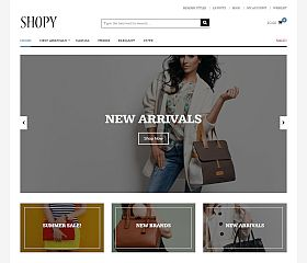 Shopy WordPress Theme by Theme Junkie