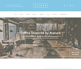 Salmon WordPress Theme via ThemeForest