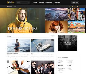 True Mag WordPress Theme via ThemeForest