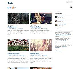 Basic WordPress Theme by Themify