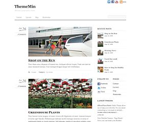 ThemeMin WordPress Theme by Themify