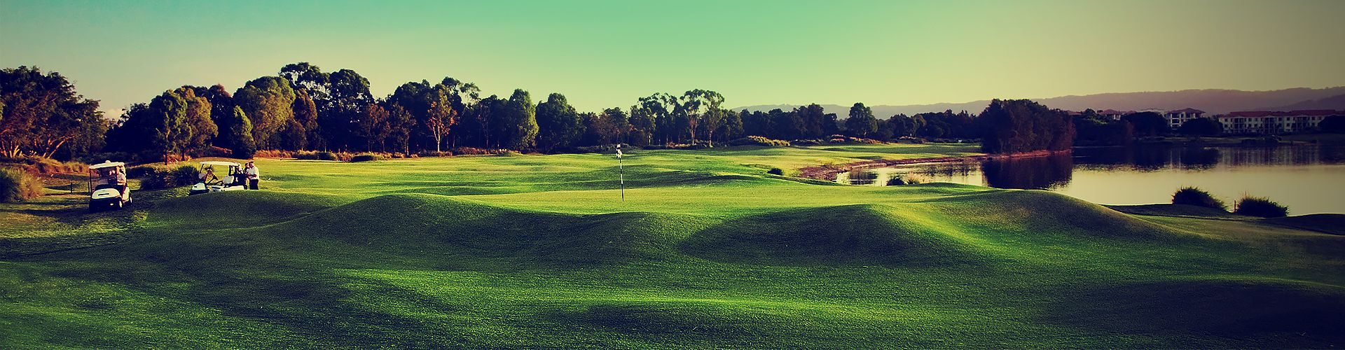 WordPress Golf Themes