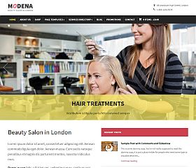Modena WordPress Theme by WPZoom