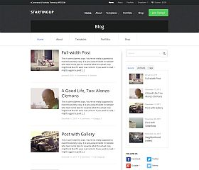 StartingUp WordPress Theme by WPZoom