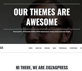 Single Genesis Child Theme for WordPress by zigzagpress